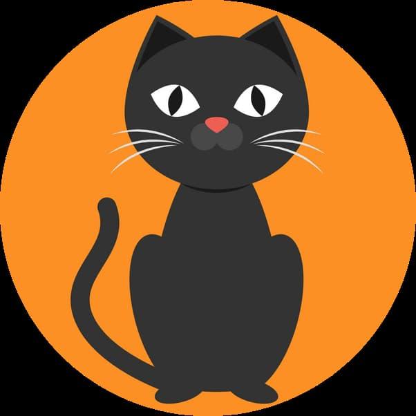 CatsBuz